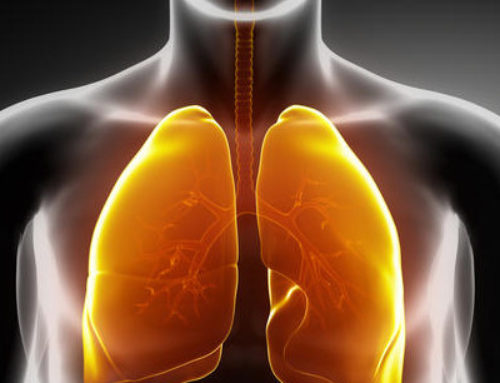 INHALED NITRIC OXIDE GAS THERAPY and ARDS